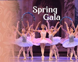 More Info for Arts Ballet Theatre of Florida: Spring Ballet Gala