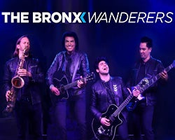 More Info for The Bronx Wanderers