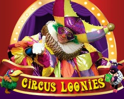 More Info for Circus Loonies