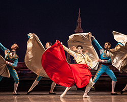 More Info for Miami City Ballet: Don Quixote