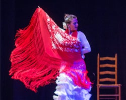 More Info for Alma Flamenca