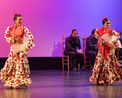 More Info for Ballet Flamenco La Rosa in Concert
