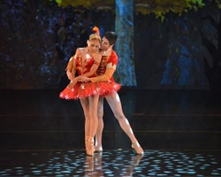More Info for Arts Ballet Theatre: Firebird, Le Spectre de la Rose, Pentimento