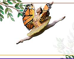 More Info for Arts Ballet Theatre: Le Papillon, the Butterfly