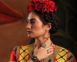 More Info for Florida Grand Opera: Frida