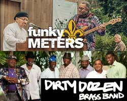 tn_FunkyMeters_DirtyDozen_PS31217.jpg