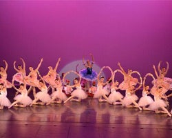 More Info for Le Corsaire–Tribute to Marius Petipa II