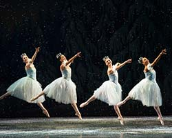 tn_MCB_nutcracker_AT16416.jpg