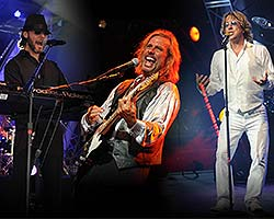 More Info for Stayin' Alive: One Night of the Bee Gees